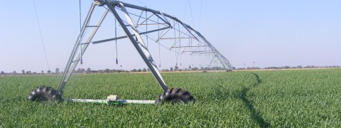 Irrigation Pivot, Chanyanya Pilot Project, Zambia